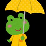 梅雨のかえる